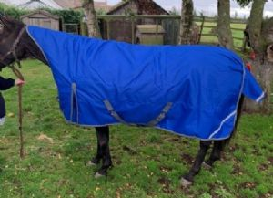 Medium Weight Half Neck Turnout Horse Rug